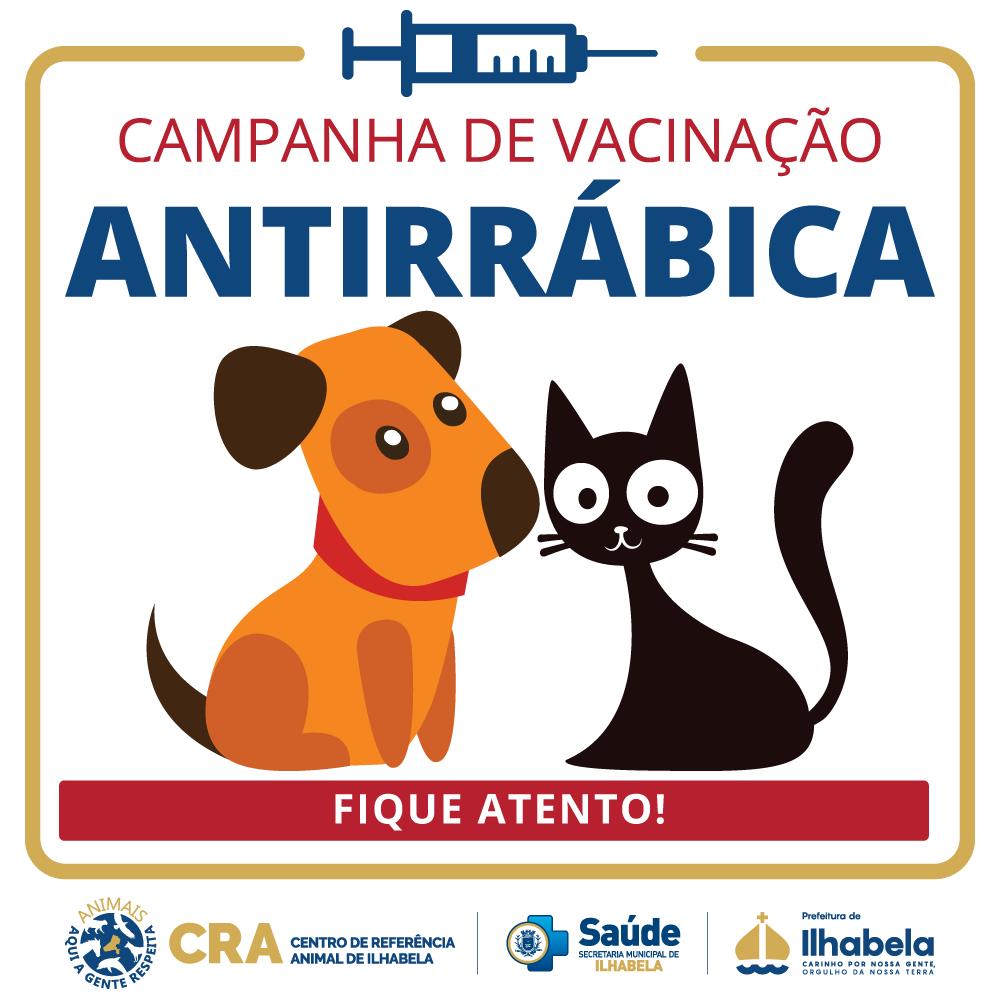 Campanha de vacinação antirrábica segue até a próxima semana no Norte de Ilhabela